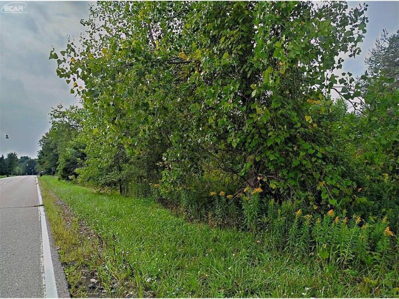 0 Webster Road Flushing, MI 48433 by Remax Real Estate Team $38,900