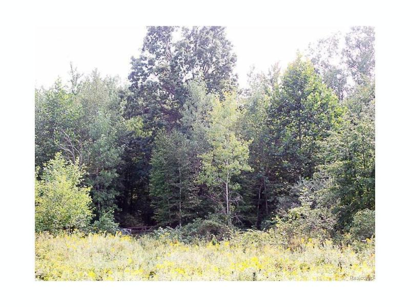 0  Ridge Rd,  Oakley, MI 48649 by Remax Tri County $129,900