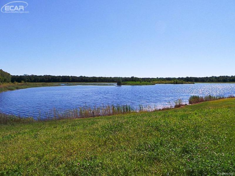 7863  Sheridan, Lot 1,  Birch Run, MI 48415 by Remax Tri County $59,900
