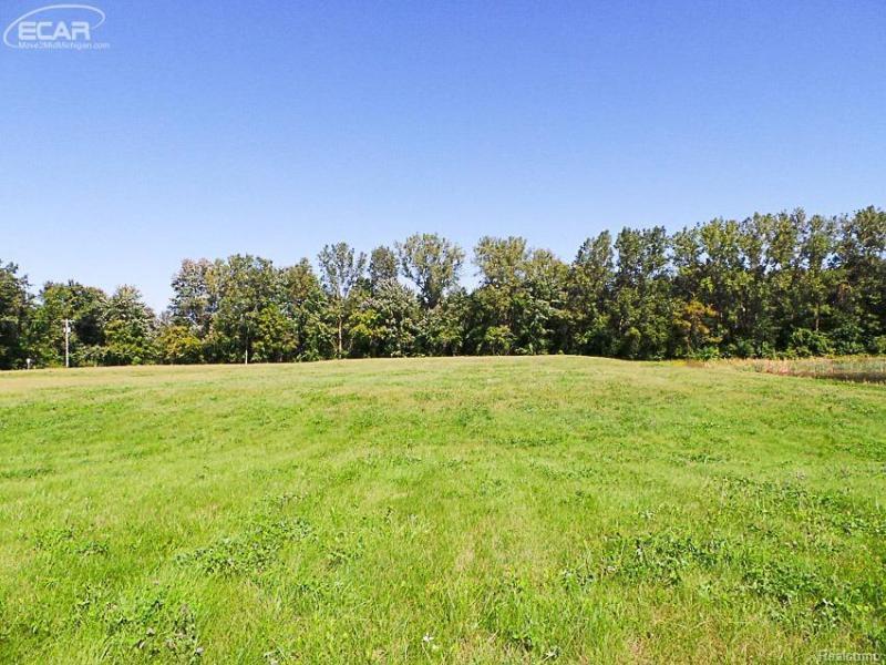 7863 Sheridan Rd, Lot 2 Birch Run Township, MI 48415 by Remax Tri County $59,900