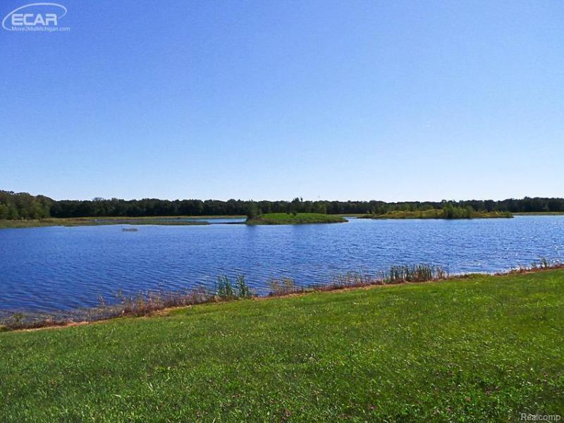 7863  Sheridan Road, Lot 3,  Birch Run, MI 48415 by Remax Tri County $59,900