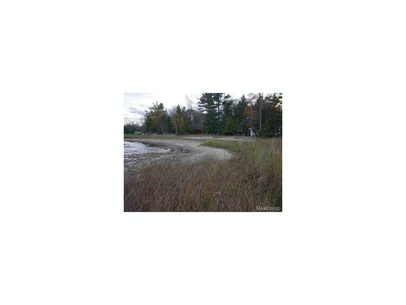 0 N Lakeshore Dr,  Black River, MI 48721 by Century 21 Metro Brokers $110,000