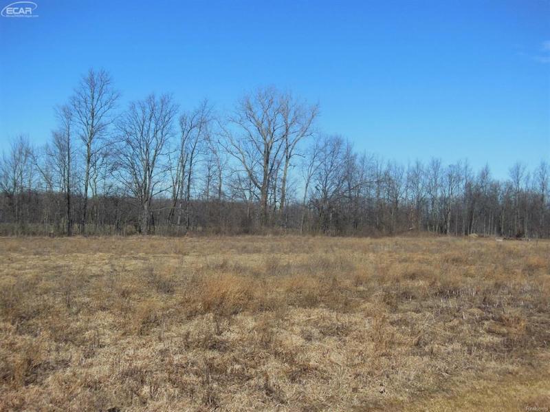 0  Oak Ridge #10 Rd,  New Lothrop, MI 48460 by Century 21 Woodland Realty $18,000