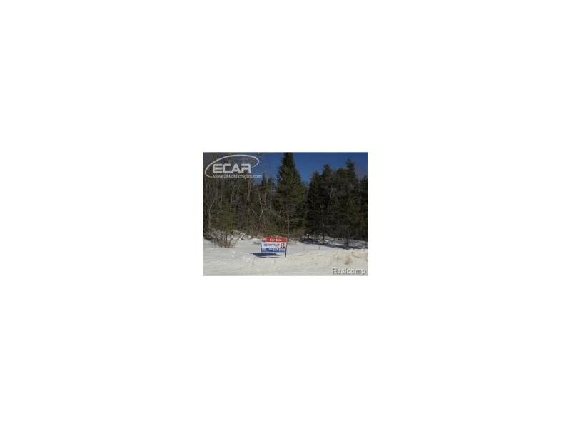 0  Ford Rd,  Wolverine, MI 49799 by Remax Platinum $23,500