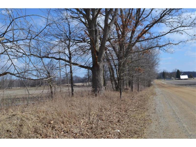 0  Lahring Rd,  Byron, MI 48418 by American Associates Inc. $119,900