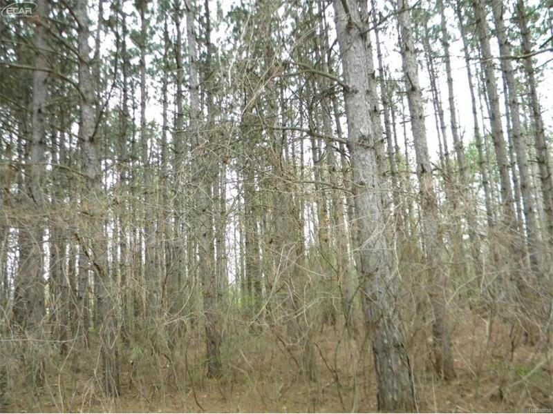 0 S State,  Corunna, MI 48817 by Map Realty Llc $50,000
