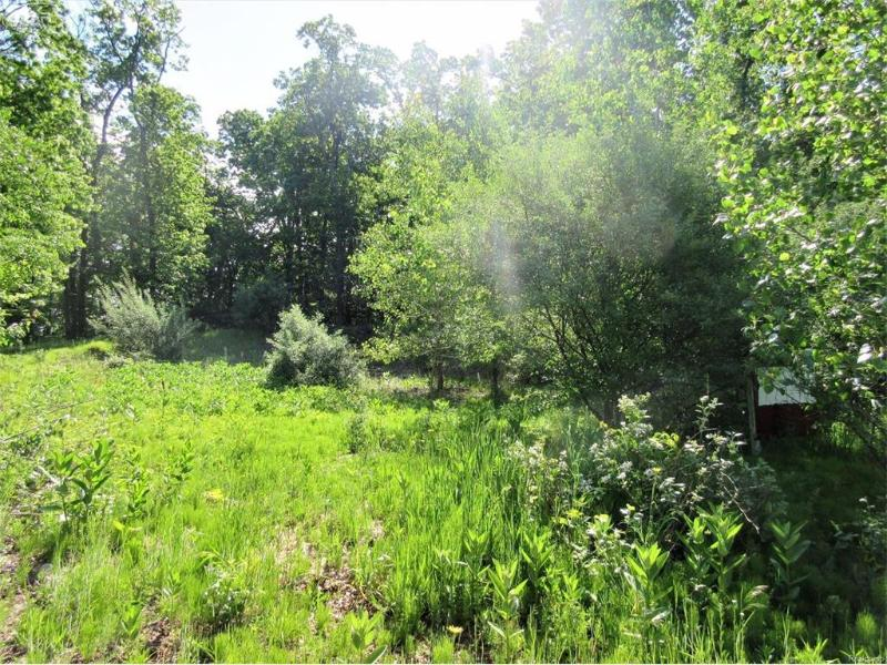 11396  Olde Wood Trl,  Fenton, MI 48430 by Remax Town & Country $59,000