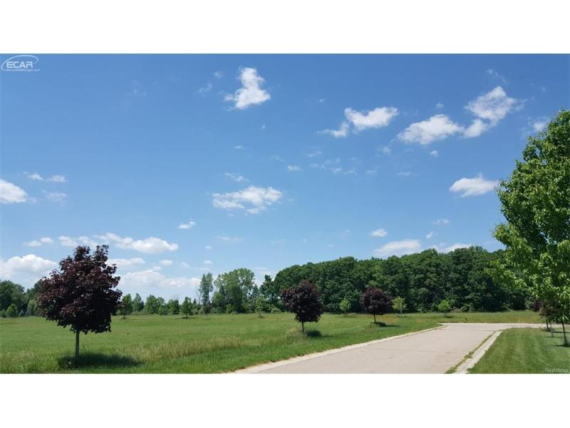 9  Shamrock Dr,  Lapeer, MI 48446 by Changingstreets.com $27,900