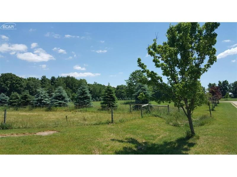 13  Shamrock Dr,  Lapeer, MI 48446 by Changingstreets.com $29,900