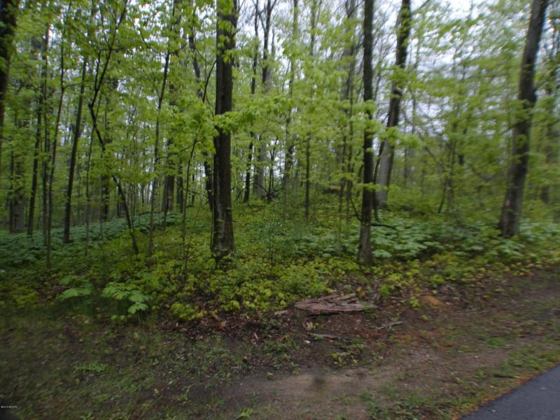 Long Lake Road Cassopolis, MI 49031 by Berrien Property $59,000