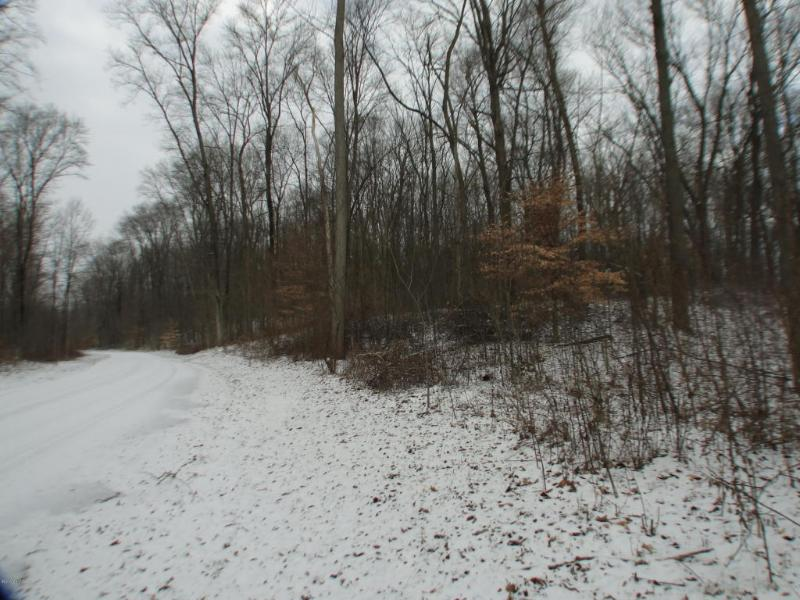 Long Lake Road 7,  Cassopolis, MI 49031 by Berrien Property $57,000