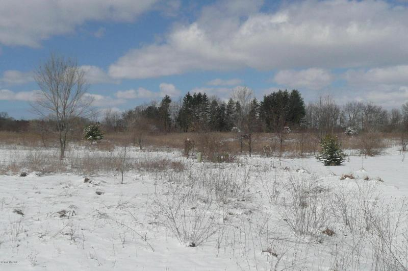 Lot 2 Elkhart Road,  Edwardsburg, MI 49112 by Cressy & Everett Real Estate $29,900