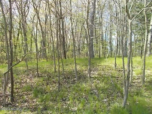 Par 7 Division,  Newaygo, MI 49337 by Pangburn Properties Inc. $139,900