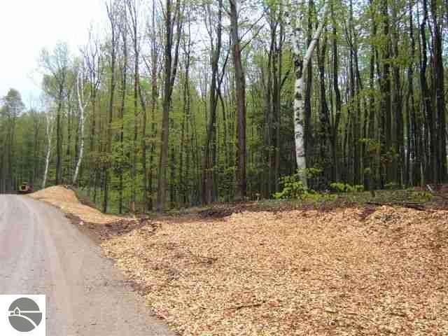 000 Tree Tops Lane,  Frankfort, MI 49635 by Century 21 Sbr-Frankfort $42,500