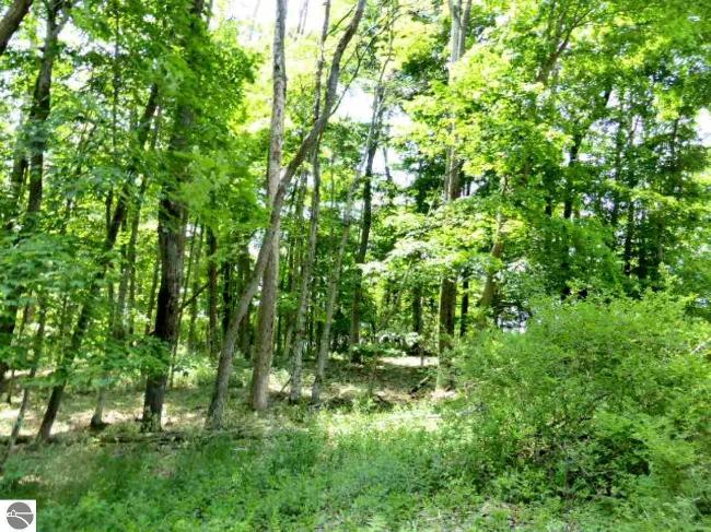 9.6 Acres Michigan Avenue,  Frankfort, MI 49635 by Real Estate One $798,000
