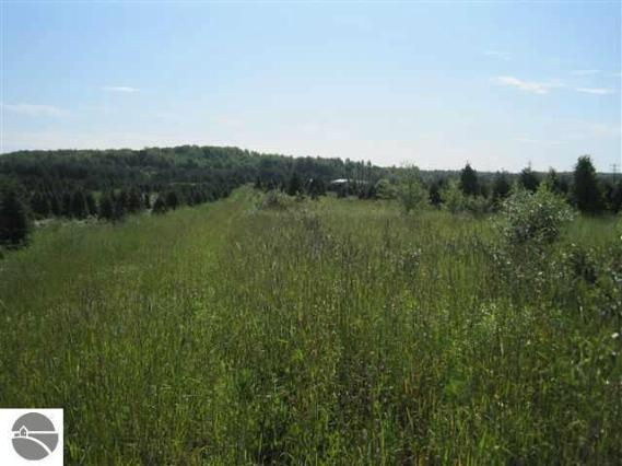 6933 M-37,  Kingsley, MI 49649 by James A Schmuckal $49,900