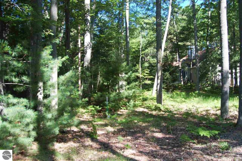 9 Twisted Oak,  Glen Arbor, MI 49636 by Lvr Realty Llc $85,500