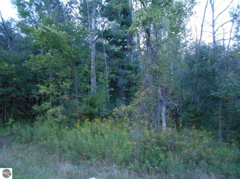 0 S Huron Rd,  Pinconning, MI 48650 by Olsen Independent Real Estate, Llc $10,000