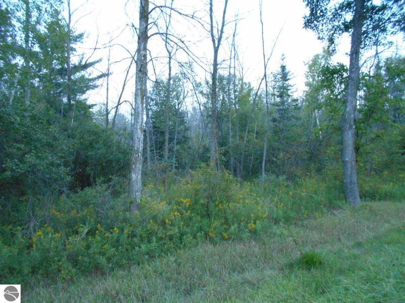 0 S Huron Rd Pinconning, MI 48650 by Olsen Independent Real Estate, Llc $10,000