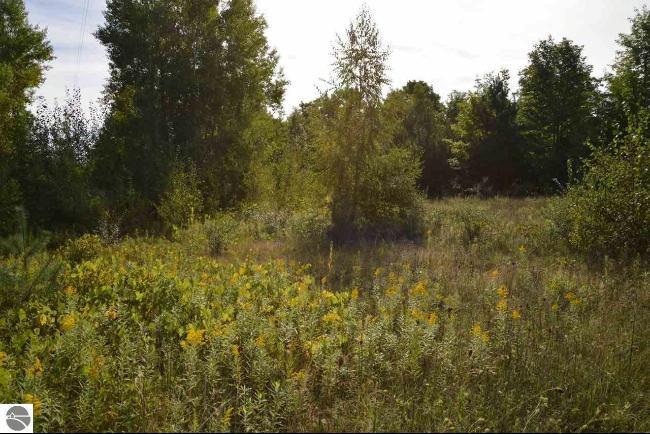 0 Torch Hills Lane,  Rapid City, MI 49676 by Re/Max Of Elk Rapids $59,900