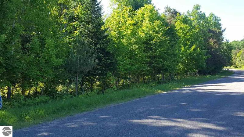 Eckhardt Road,  Bellaire, MI 49615 by Real Estate One $17,900