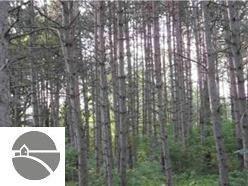 2134 Kodiak Trail,  Kingsley, MI 49649 by Real Estate One $19,900