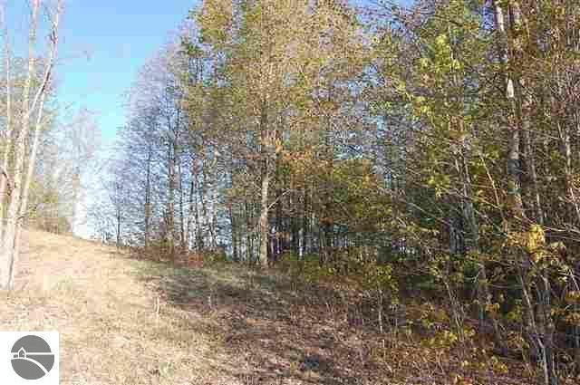 on Tyler Road,  Kalkaska, MI 49646 by Tcarea.com $11,900