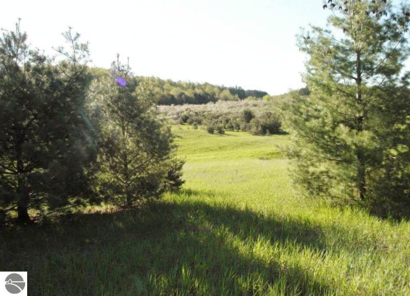 Parcel 3 Narrow Gauge Road,  Beulah, MI 49617 by Re/Max Bayshore-Benzie $45,000
