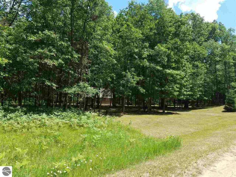 11744 N Benson Road,  Manistee, MI 49660 by Coldwell Banker Alm Realty $59,500