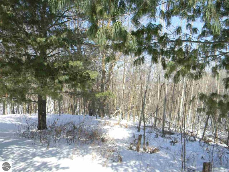 4151 E State Road,  Hale, MI 48739 by Benjamin Realty $109,000