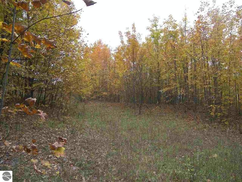 5822 S Hlavka Hills Drive,  Maple City, MI 49664 by Serbin Real Estate $109,900
