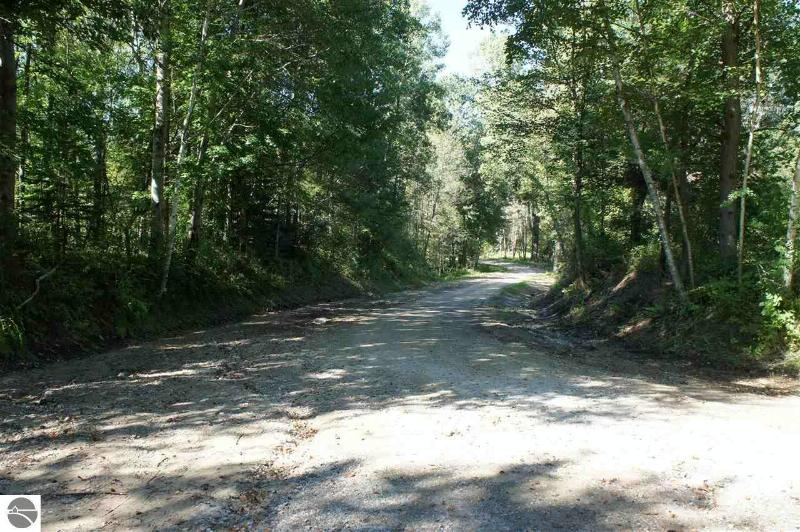 TBD 50AC Wise Road,  Mt Pleasant, MI 48858 by Hometowne Realty $100,000