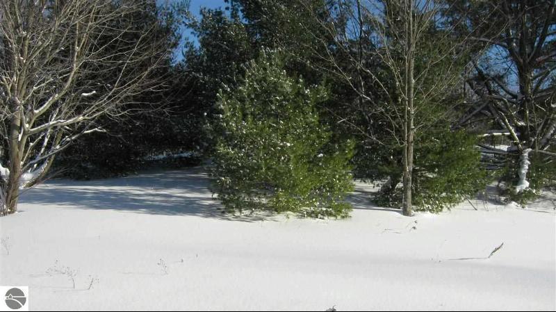 7867 Wildwood Drive,  Custer, MI 49659 by Coldwell Banker Schmidt-Kalkas $4,900
