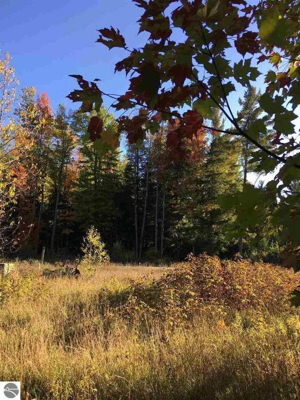 LOT 1-25 Scenic Woods Circle,  Cadillac, MI 49601 by Era Greater North Properties $230,000