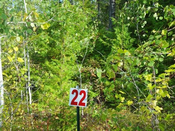 Rivendell Lane,  Presque Isle, MI 49777 by Lakeshore Realty $9,900