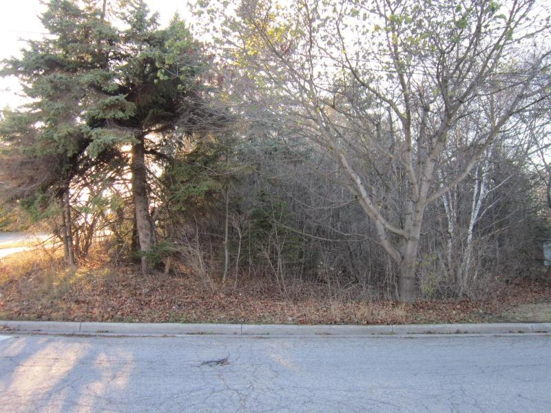N Seventh Street,  Rogers City, MI 49779 by Real Estate One $9,000