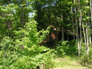 11442 Brunn,  Frederic, MI 49733 by Century 21 River Country $245,000