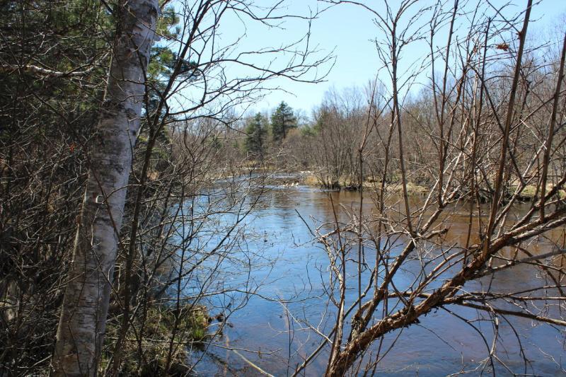 Sumac Trail Grayling, MI 49738 by Re/Max Of Grayling $78,500