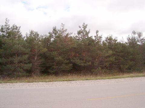 N Black River Road,  Cheboygan, MI 49721 by Berkshire Hathaway Homeservices-Cheboygan $4,950