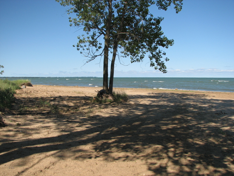 6094 Port Austin Rd. Caseville, MI 48725 by Real Estate One $299,900
