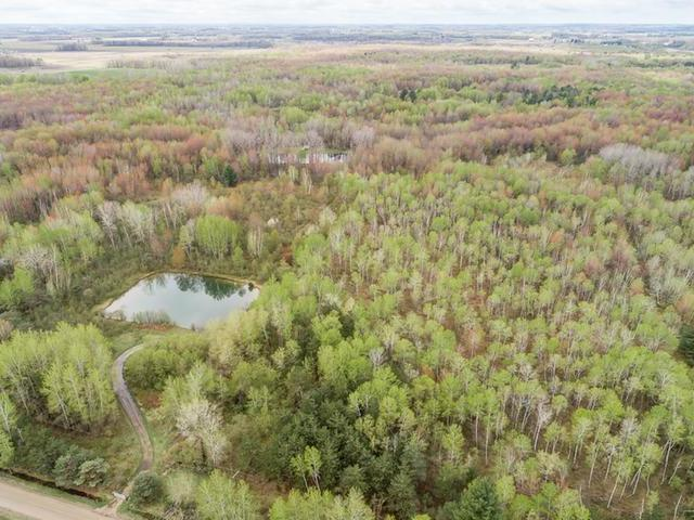 Listing Photo for 200 acres Wise Road