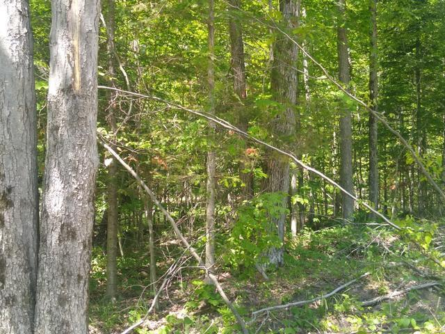 Listing Photo for 0 Cranberry Lake Rd