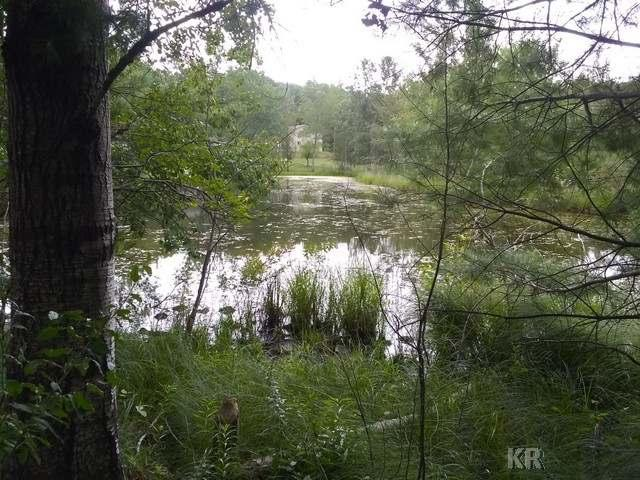 Listing Photo for Lot 19 Queens Way