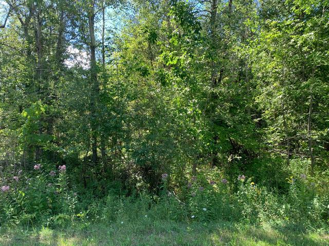 Listing Photo for Lot 4 Linksview Way