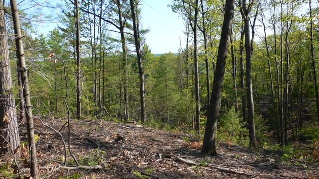 Listing Photo for Lot 6 Vistas of Walloon