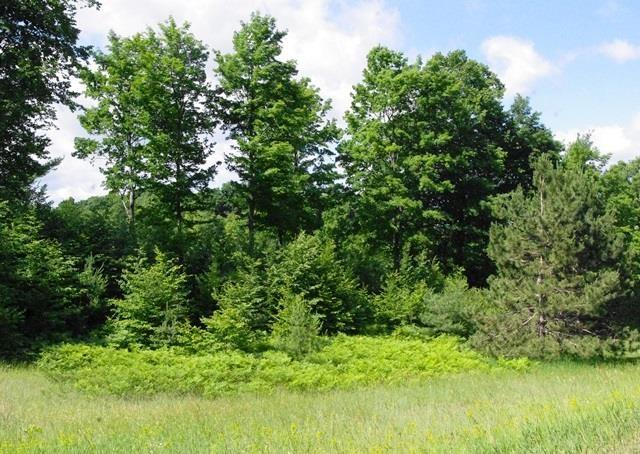 Listing Photo for Lot 13 Ridgeline Drive