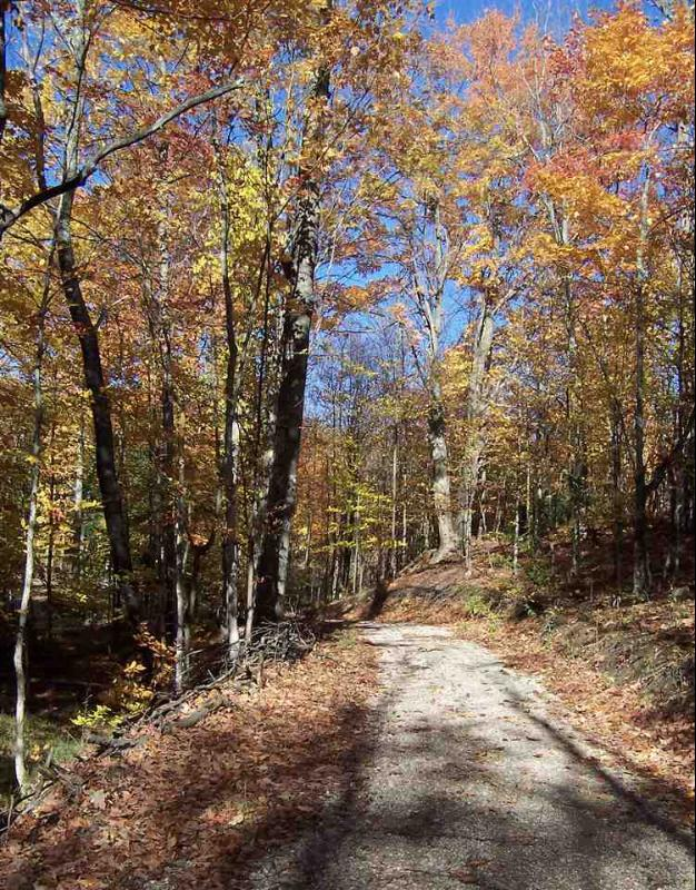 Listing Photo for Big Valley Trail