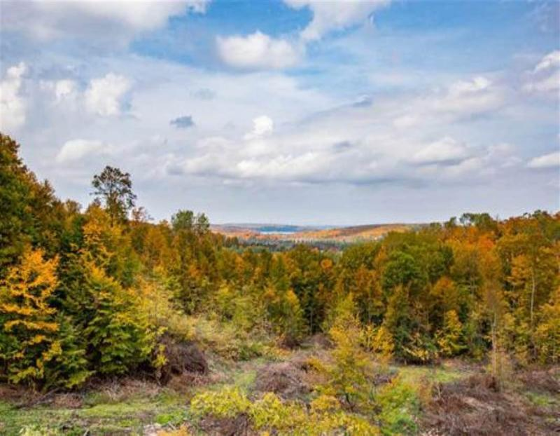 Listing Photo for Lot 19 High Pines Trail
