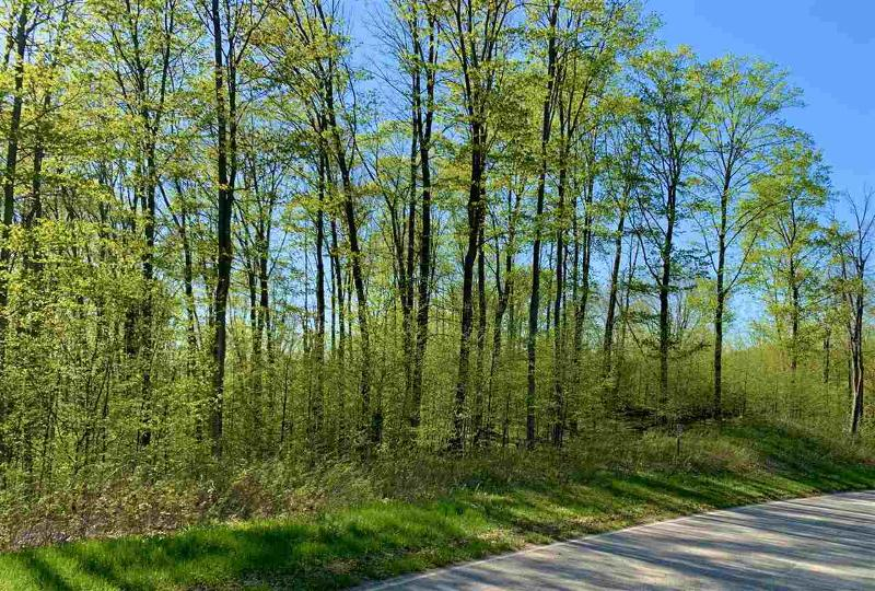 Listing Photo for Mountain Valley Lot #84