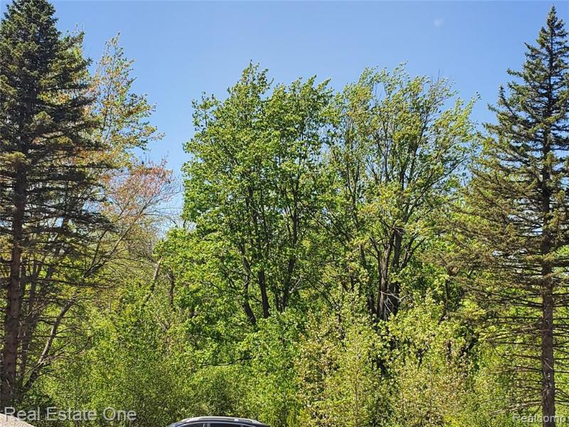 Listing Photo for 7093 Sashabaw Rd